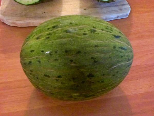 Melone intero Piel de Sapo