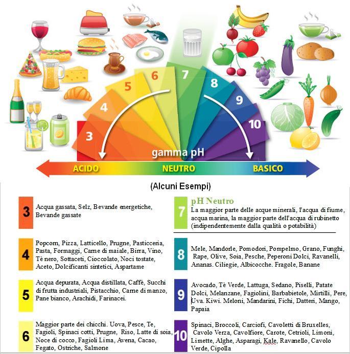 Rendi alcalino il tuo corpo arnold ehret for Conosci il tuo corpo scegli il tuo cibo