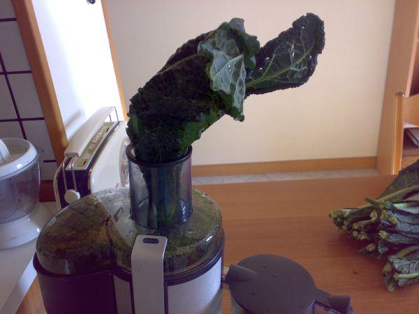 estrazione succo verdure a foglia verde cavolo nero