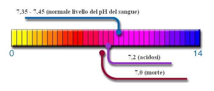 livelli del pH nel sangue