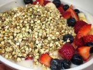 colazione di germogli